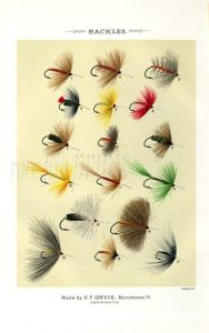 ORVIS - HACKLES - TROUT FLIES plate (A) fishing print