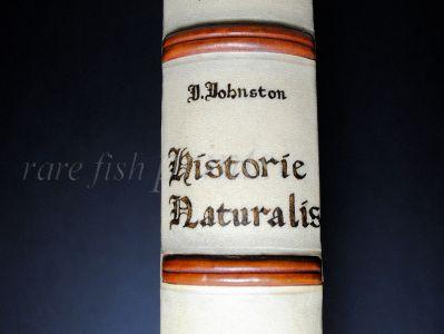 JONSTON & MERIAN - BOOK DETAIL
