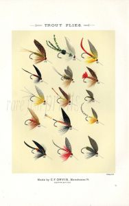 ORVIS - TROUT FLIES plate (S) fishing print