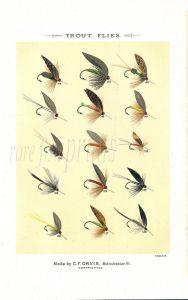 ORVIS MARBURY - TROUT FLIES plate (Q) fishing print