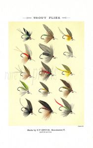 ORVIS - TROUT FLIES plate (P) fishing print
