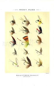 ORVIS - TROUT FLIES plate (O) fishing print
