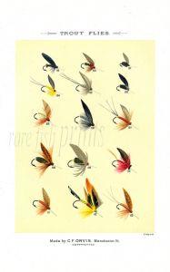 ORVIS - TROUT FLIES plate (N) fishing print
