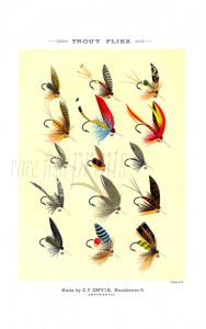ORVIS - TROUT FLIES plate (M) fishing print