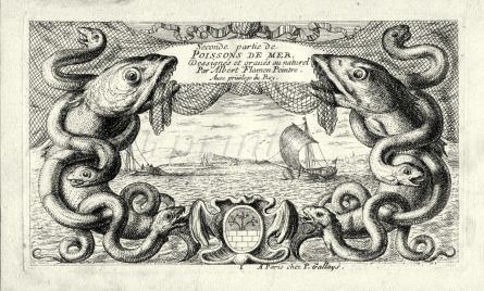 ALBERT FLAMAN - POISSSONS DE MER TITLE PAGE engraving
