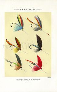 ORVIS - LAKE FLIES plate (K) fishing print