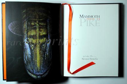 MAMMOTH PIKE - detail 2.