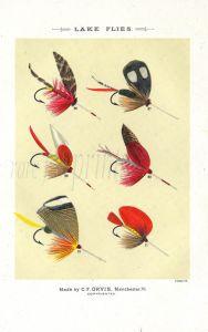 ORVIS - LAKE FLIES plate (J) fishing print