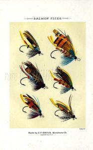 ORVIS - SALMON FLIES - plate (D) fishing print