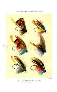 ORVIS - SALMON FLIES plate (C) fishing print