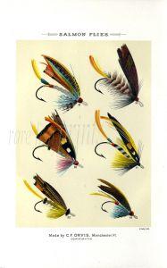 ORVIS - SALMON FLIES - plate (B) fishing print