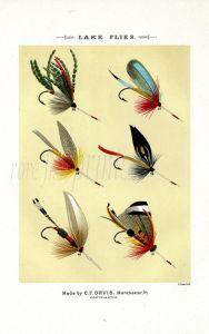 ORVIS - LAKE FLIES plate (E) fishing print
