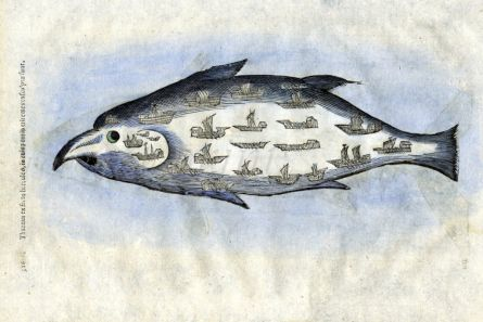 SEA MONSTERS - THE GIANT TATTOOED TUNA or TUNNEYFISH print