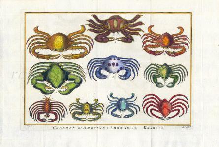 SCHLEY/PREVOST - CANCRES D' AMBOINE crab print