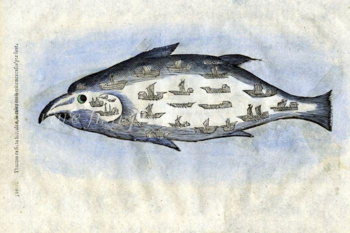 SEA MONSTERS - THE GIANT TATTOOED TUNA or TUNNEYFISH print